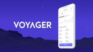 Voyager review