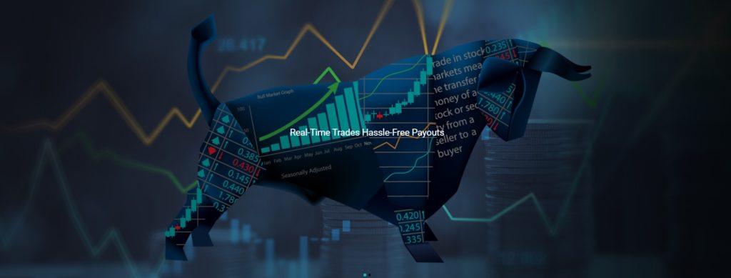 Tradinvestor fraud
